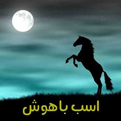 اسب باهوش