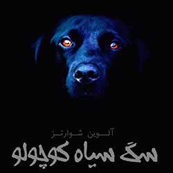 سگ سیاه کوچولو